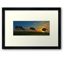 Windswept Trees - Norfolk Island Framed Print