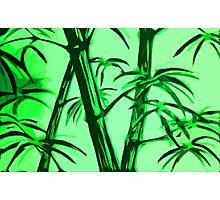 green geometric bamboo Photographic Print