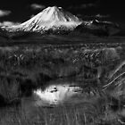 Mount Ngauruhoe by Paul Alsop