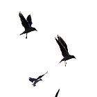 Fly high in the skies... (iPhone Design) by Hallo Wildfang