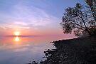Sunrise - Ottawa River by Debbie Pinard