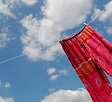 Pant hanging on washing line by Sami Sarkis