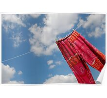 Pant hanging on washing line Poster