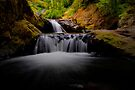 Oh How Sweet It IS by Charles & Patricia   Harkins ~ Picture Oregon