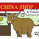 Bull in a China Shop by Rob Johnston