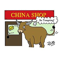 Bull in a China Shop Photographic Print