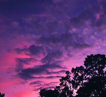 """""""Southern Sunset"""" by Anthony Cherubino"""