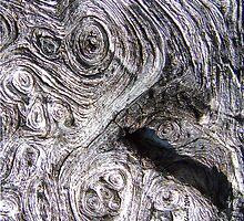 Tree Faun by © CK Caldwell IPA