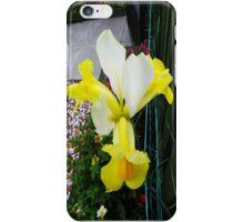 Flower iPhone iPhone Case/Skin