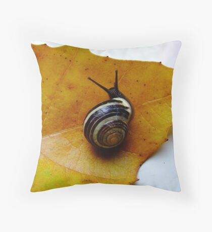 Autumn is here... Throw Pillow