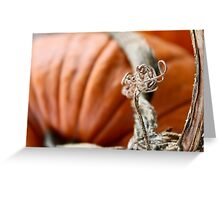 Pumpkin Love 1 Greeting Card