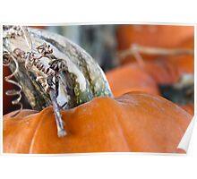 Pumpkin Love 2 Poster