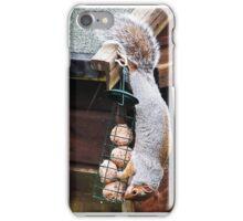 iPhone Squirrel iPhone Case/Skin