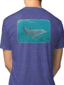 Shallow Reef Tri-blend T-Shirt