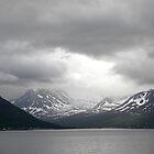 Gloom over the Norweigan Fjords by Sarah Jane Bingham