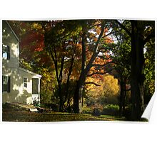 Next Door on a Perfect Day Poster