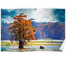 Autumn at Cypress Island Poster