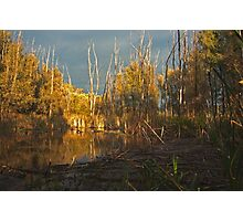 lake,sky,trees Photographic Print