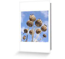 Seedheads Greeting Card