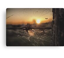 Outback Living Canvas Print