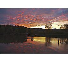 lake,trees,bulrush Photographic Print