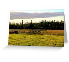 New Mown Hay on Prince Edward Island Greeting Card