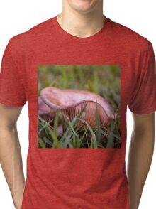 Fungus in the grass Tri-blend T-Shirt