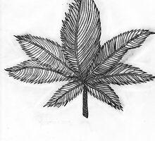 Nstinct Marketing Sweet Leaf Sativa by Nstinct