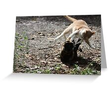 Annie Oakley Kitty Vs Wild Bill Hickock Kitty  Greeting Card