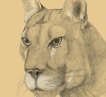 Big cat by Barbara Weir