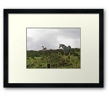 Over the horizon Framed Print