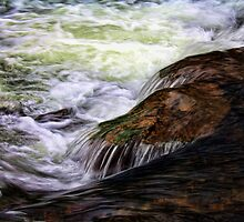 Rapids at Beavers Bend by Carolyn  Fletcher