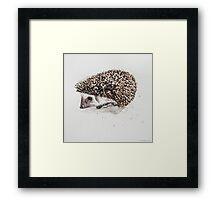 Swift Art, Porcupine Framed Print