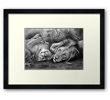 A Place To Be Free Framed Print