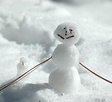 Mini Snowman by teresalynwillis