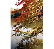Fall Fashion Photographic Print