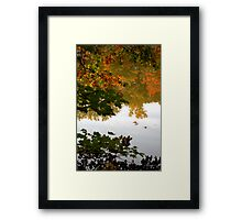 Double Feature Framed Print