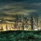 Rising Sun by Justin Atkins