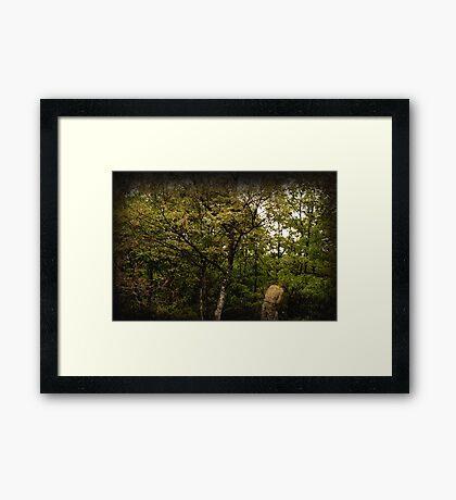 Blend Into Nature Framed Print