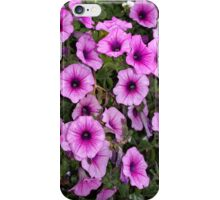 """music glamour"" petunias i-phone iPhone Case/Skin"
