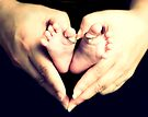 All Heart by Carol Knudsen