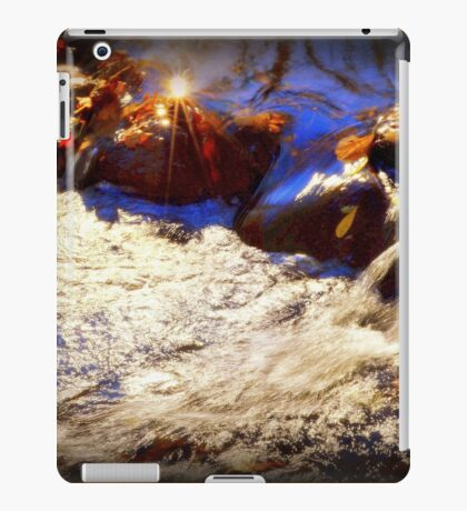 Autumn Rush iPad Case/Skin