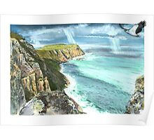 Cape Raoul and Sea Eagle Poster