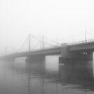 Fog by Sergey Martyushev