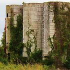 Old Farm Silos by Cynthia48