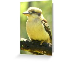 Who's watching who? Greeting Card