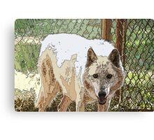 Wolf 2 Canvas Print