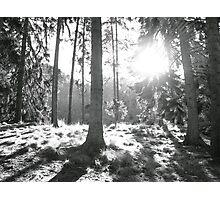 b/w sunbeams in Launceston Photographic Print