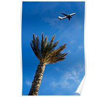 Palm tree with aeroplane flying in background, low angle view Poster