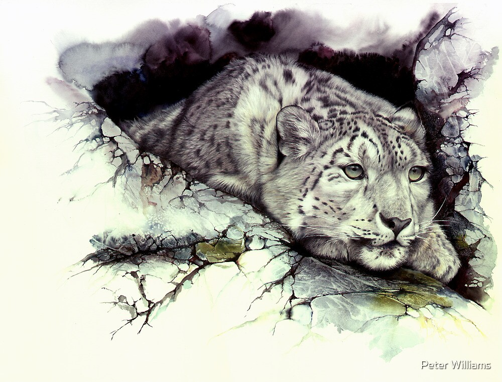 Elusive Nature by Peter Williams